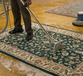 Carpetr Rug Cleaning